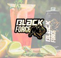 logo-blackforceenergy