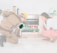 logo-etoprag