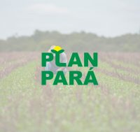 logo-planpara